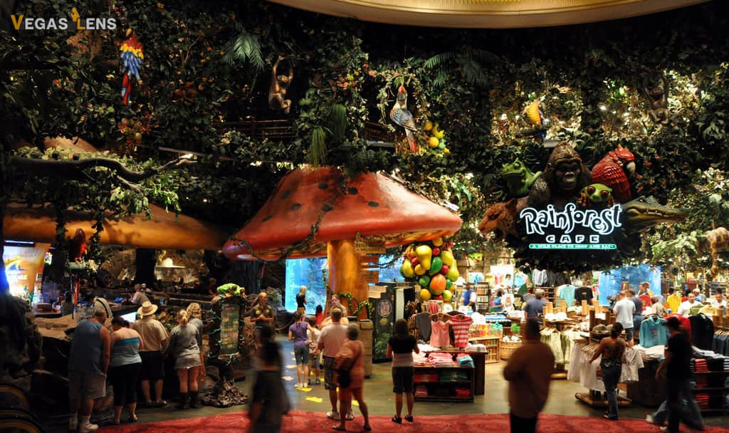 Rainforest Cafe - Family friendly restaurants in Las Vegas