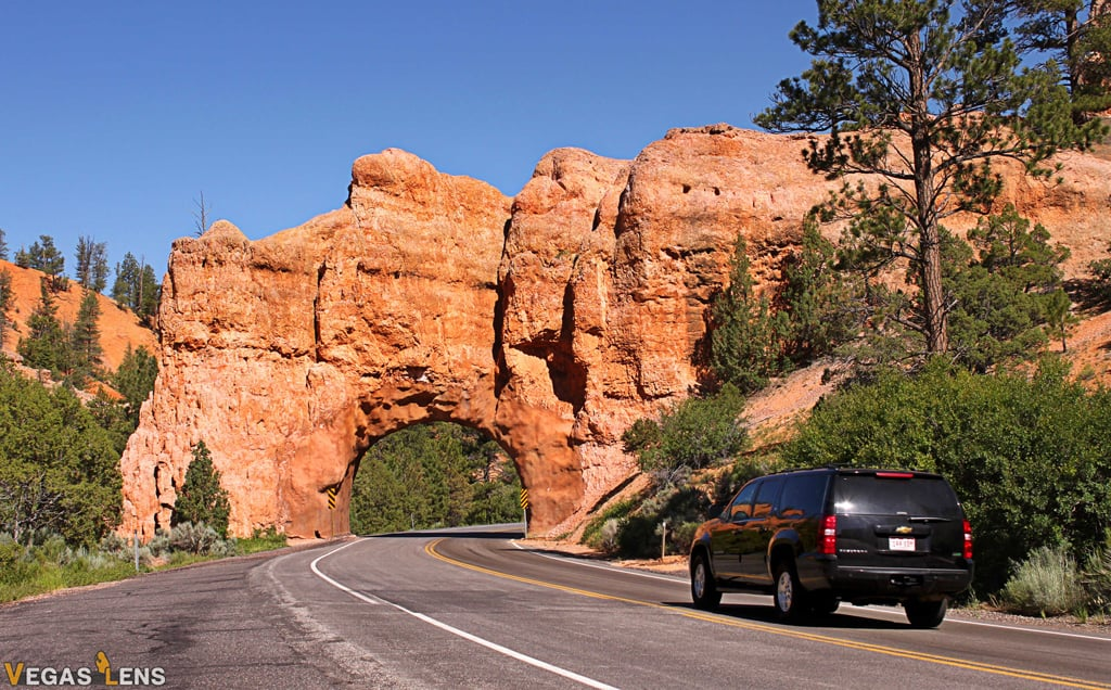 Dixie National Forest - Las Vegas day trips
