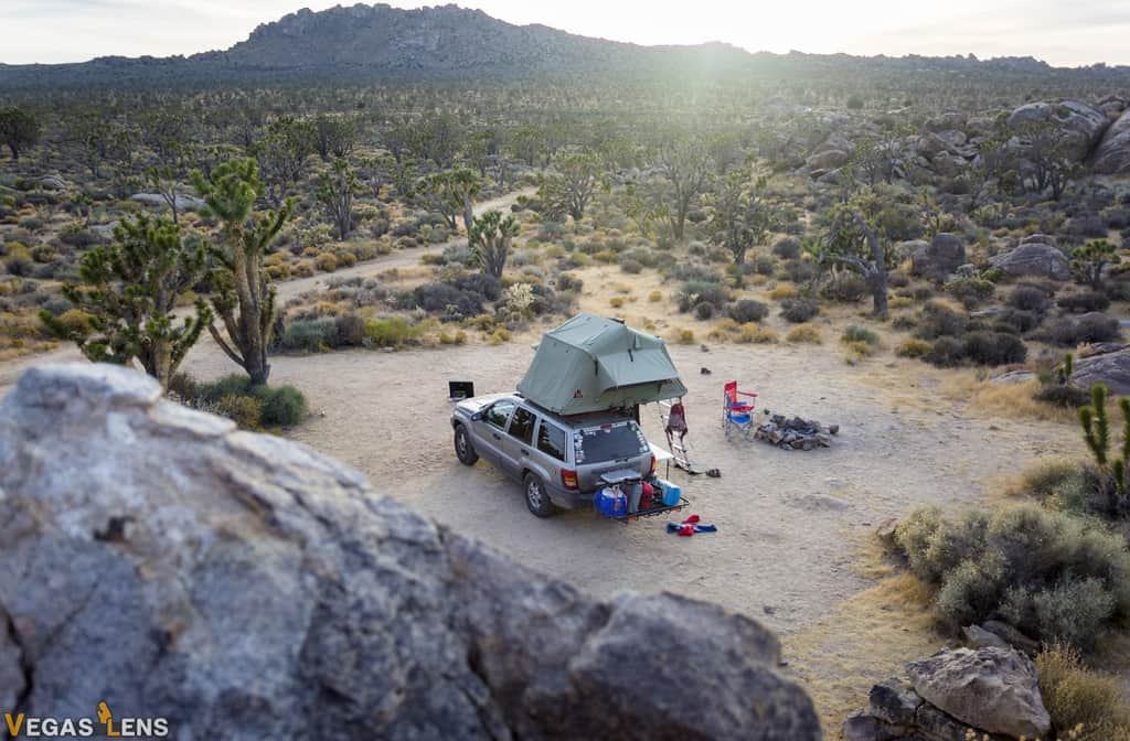 Mojave National Preserve - Best day trips from Las Vegas