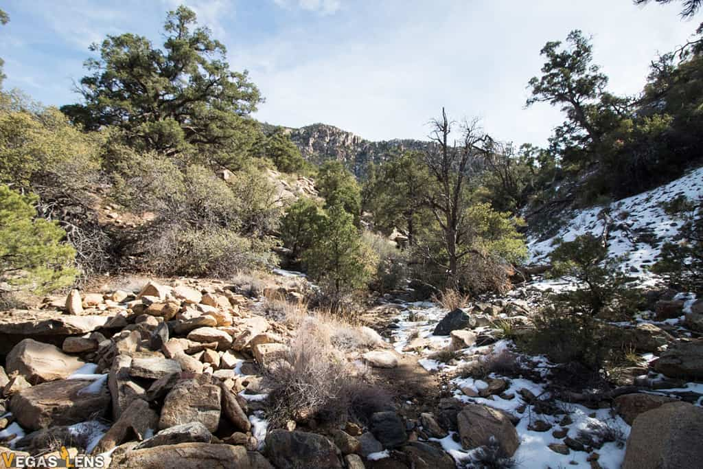 The Mount Tipton Wilderness Area - Day trips from Las Vegas