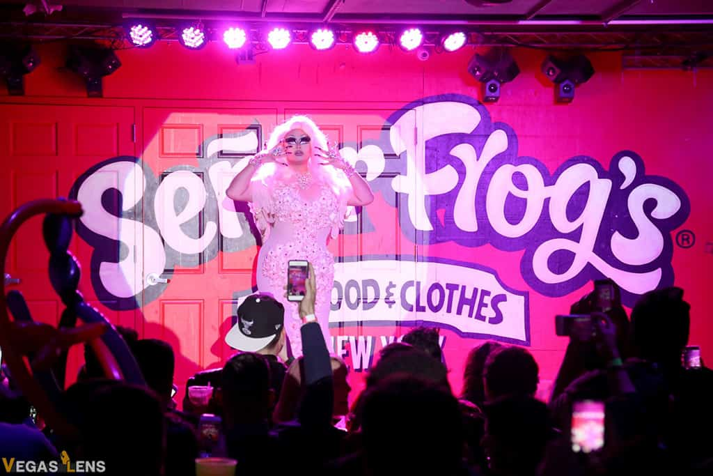 Drag Brunch at Senor Frog's - Las Vegas matinee shows