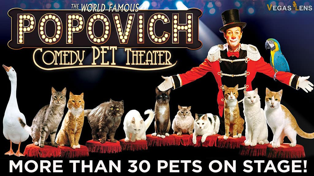 Popovich Comedy Pet Theater - Las Vegas afternoon shows