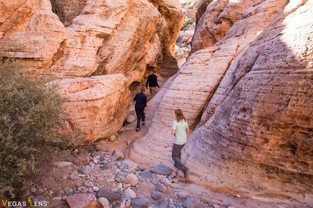 Red Rock Canyon - Las Vegas Teenage Activities